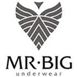 Mr. Big Underwear Kuponkódok & Kuponok - 45% Kedvezmény
